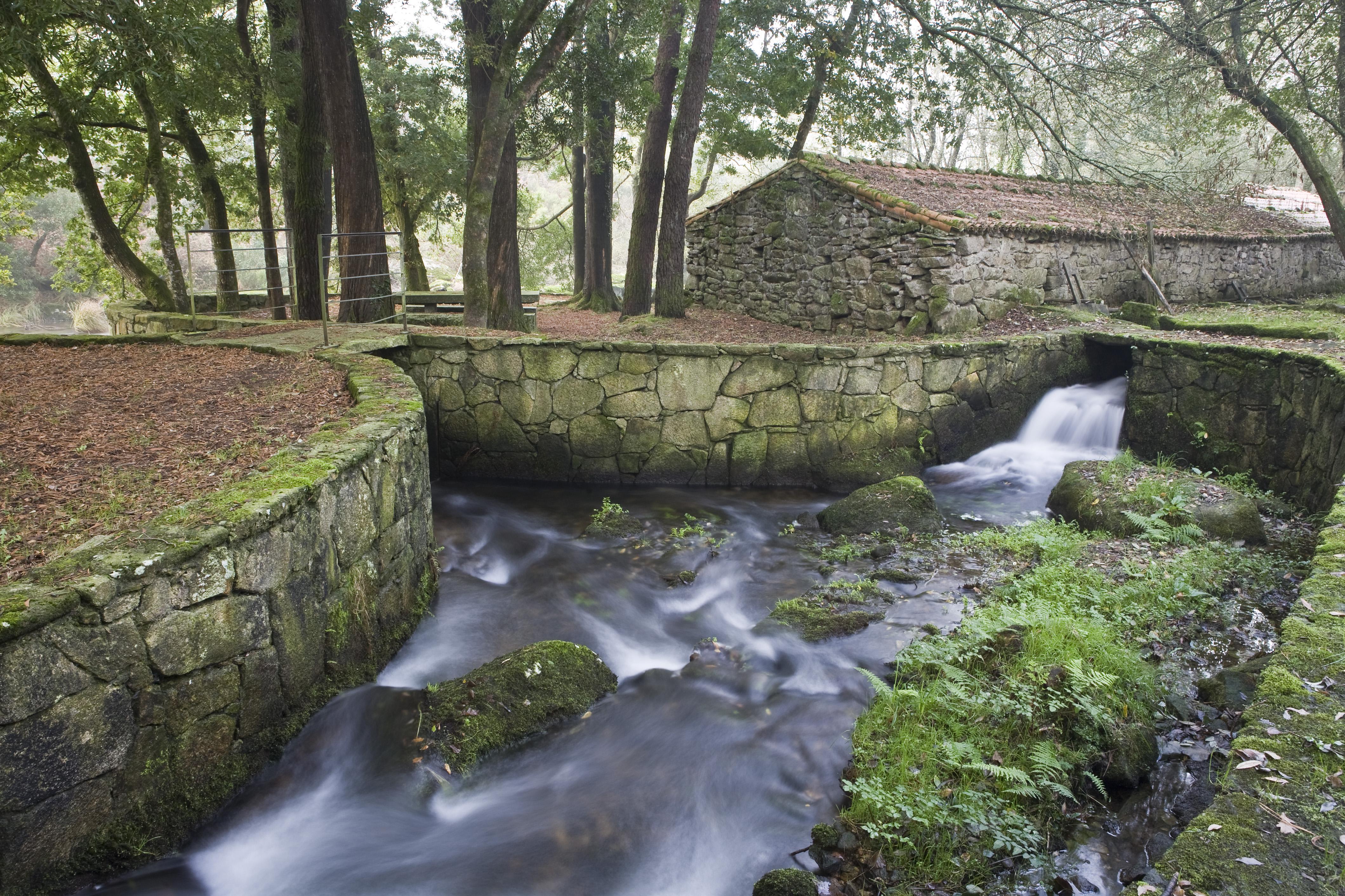 Los establecimientos rurales gallegos recibieron a - Turismo rural galicia con ninos ...