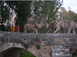 Los Centauros han completado otras rutas a lomos de los camellos