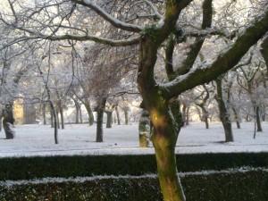 El Paseo de la Herradura presentó este aspecto durante los días de la nevada