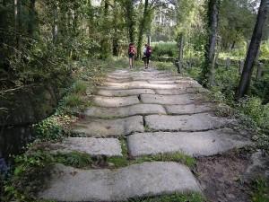 Camino portugués (por FreeCat)