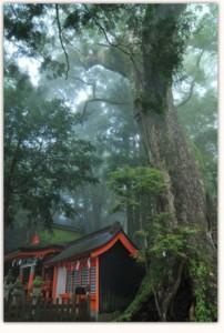 Santuario de Kumano Hongu, en el municipio de Tanabe, la meca espiritual de la ruta de Kumano