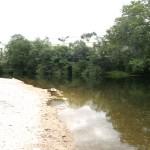 10_Area_de_recreo_Praia_Fluvial_do_rio_Tea_4_g