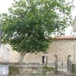 10_Igrexa_parroquial_San_Salvador_g