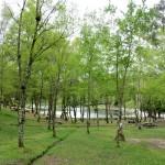 10_Lagoa_de_Castiñeiras_3_g