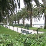 10_Parque_2_g