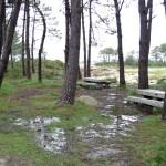 10_Parque_Natural_de_Carreirón_2_g