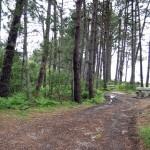 10_Parque_Natural_de_Carreirón_4_g