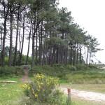 10_Parque_Natural_de_Carreirón_5_g