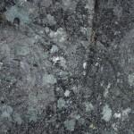 10_Petroglifos_Chan_da_Lagoa_g