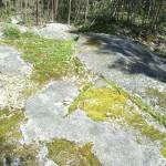 10_Petroglifos_en_Viascón_Laxe_das_Coutadas_3_g