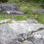10_Petroglifos_en_Viascón_Portela_de_Laxe_g