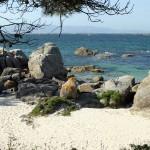 10_Praia_Area_Grande_2_g