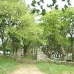 10_Santuario_dos_Milagres_de_Amil_5_g