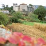 Castillo Vimianzo Costa da morte