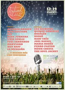 cartel 2014 festival de la luz