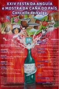 cartel festa da anguia 2014