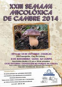 semana micoloxica de cambre 2014