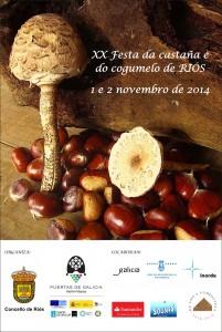 Festa da castaña e do cogumelo de riós
