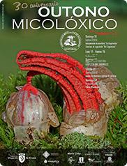 Outono micoloxico A Cantarela 14