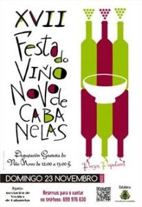 cartel viño novo cabanelas