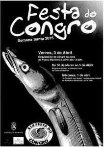 cartel Festa do Congro 2015