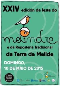 Cartel Melindre 2015