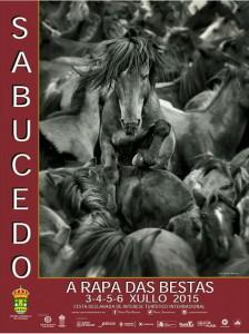Rapa das Bestas Sabucedo 2015