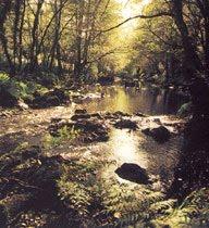 Río Xuvia