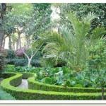 Jardin Botanico padrón