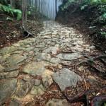 Kumano Kodo pavestones2