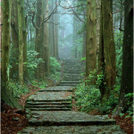 Daimonzaka del Kumano Kodo