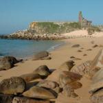 Panorámica de Playas en Sanxenxo
