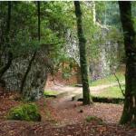 Naturaleza en Cangas
