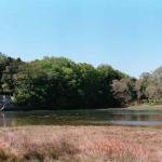 Desembocadura en Boiro