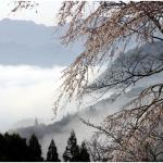 Montañas del Kumano en las nieblas