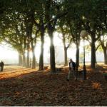 Parque en Pontevedra
