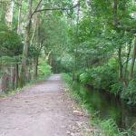 Parques de Viveiro