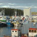 Puerto de Cambados