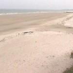 Playa de arealonga 5