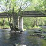 Puente Abarca Freas