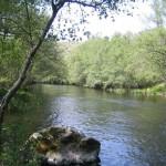 Rio Tunho A Barca