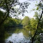 a baña rio 2
