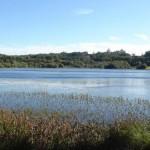 as lagoas 4