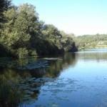 as lagoas 5