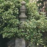 fuente en plaza de avila