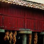 horreo típico gallego