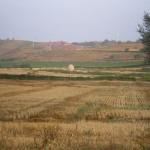paisaje de azofra por el camino