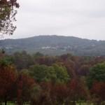 paisaje vilamarin 2
