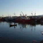 puerto de foz