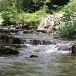 río Erro por esta localidad